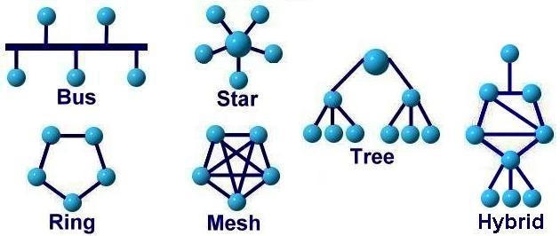 انواع-توپولوژی-شبکه-های-کامپیوتری