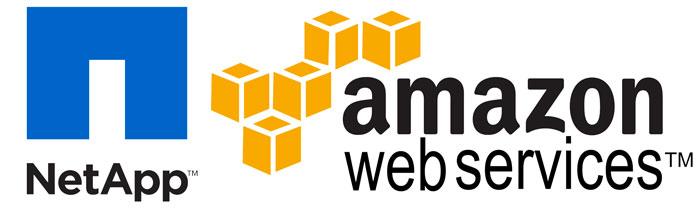 نرم-افزار-ONTAP-Cloud-برای-وب-سرویس-آمازون