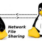 پروتکل NFS Network File System